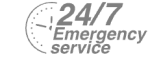 24/7 Emergency Service Pest Control in Borehamwood, Elstree, Well End, WD6. Call Now! 020 8166 9746
